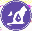 Здоровье мочевыделительной системы