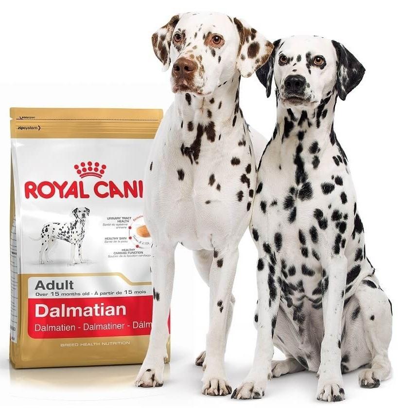 Корм royal canin для далматина